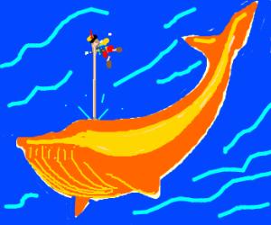 Pinochio sticks his nose to orange whale