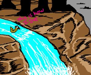 Duck anticipates impending Death!