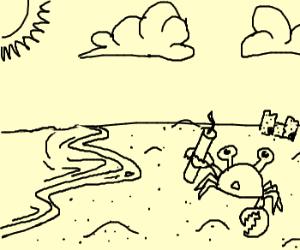 Sandcrab finds unlit TNT on the beach
