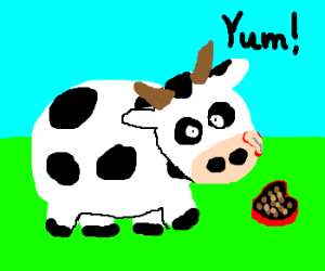 cute cow eat chocolate on grass