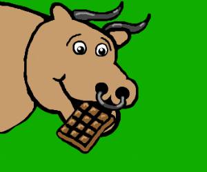 Bull cannot get enough milk chocolate.