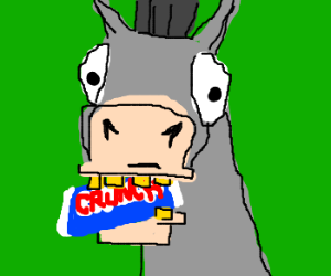 My horse can fetch Crunch bars
