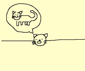 catline speaks cat