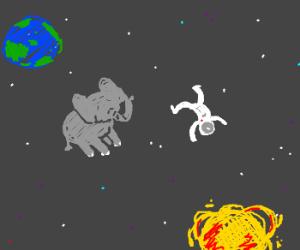 elephant astronaut - photo #33