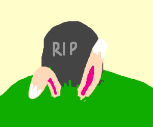 Donny Darko Dies.