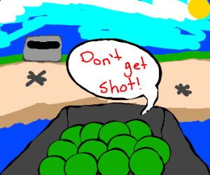 Iwo Jima landings advice: don't get shot