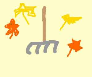 An Ordinary Rake