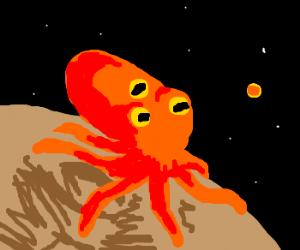 Octopus from galaxy far far away