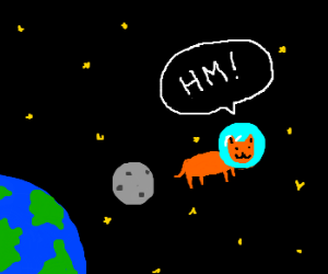 cat in space say: hm!