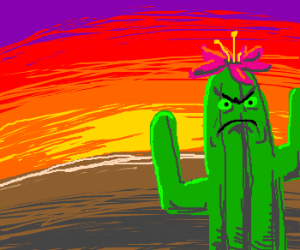 Pretty cactus at sunset. Looks annoyed.