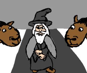 Oppa Gandalf Style