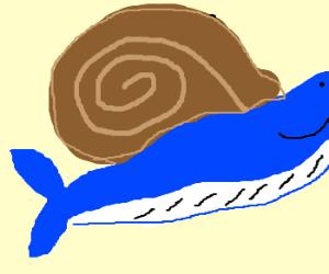 A Snail-Whale