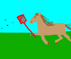 A horse chasing some flies