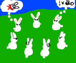 Seven bunnies hate each other
