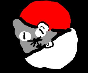 Kitten doesn't fit in pokeball :(