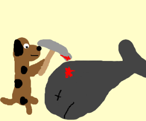 Dog kills whale with stone pick