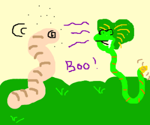 headless worm confused by frogsnake;boo!