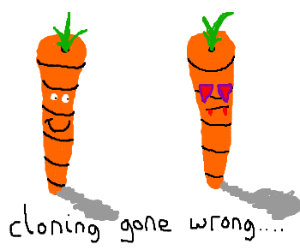 Carrot forms clone with dead man's soul.