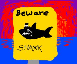 MUSTACHE SHARK- Beware.