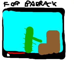 A cactus plays piano for barrack obama