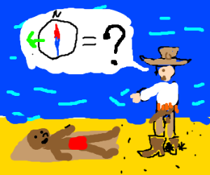 cowboy on the beach asking for the west