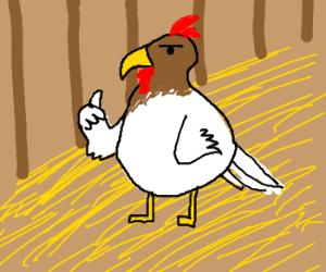 Chickenhawk thumbs-up