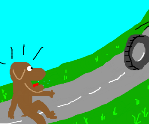 dog is amazed by a wheel