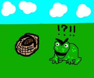 frog mildly irritated by picnic basket