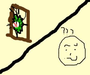 baseball broke window/guy is confused