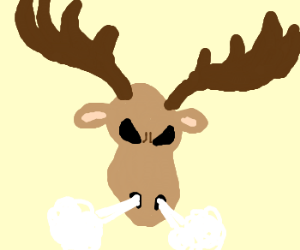 One Angry Moose