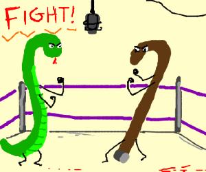 cane vs. snake