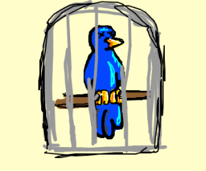 The Parrot is dead and nailed into cage