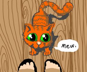 Happy orange cat greets you
