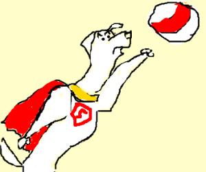 Super Dog catches a ball