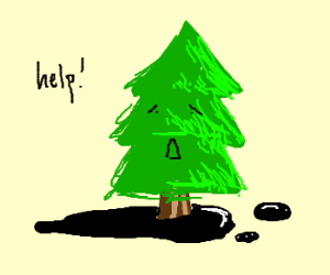 Christmas tree caught in tar, no one helps.