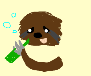 Drunk sloth