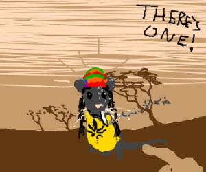 Rastafarian rat safari