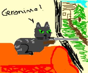 cat sniper says geronimo!