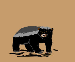 HoneyBadger- The Most Fearless Animal On Earth