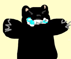 Black bear has rabies