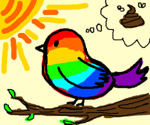 Rainbow Bird thinks of poo