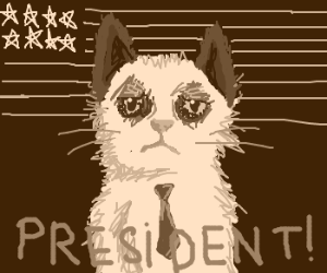 Grumpy Cat becomes US PRESIDENT