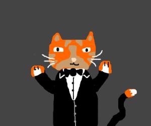 Orange cat in formal attire