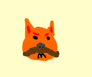 Stalin cat does not approve