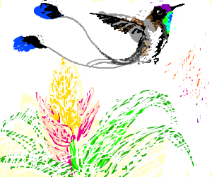 A pretty watercolor hummingbird & flower