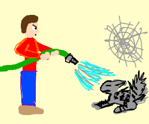 Man spraying cat and cobweb