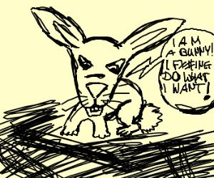 I'm a bunny- I do what I want!