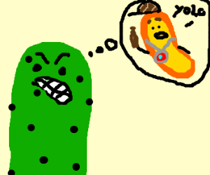 Pickle hates cheetos
