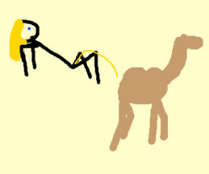 Woman mistakes camel for a toilet