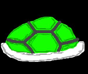 Koopa Trooper Green Shell